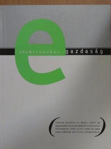 Fűrész Gábor - Elektronikus gazdaság [antikvár]