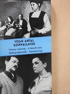 Végh Antal - Színvallatás [antikvár]