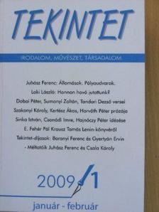 Csala Károly - Tekintet 2009. január-február [antikvár]