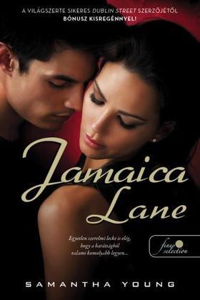 Samantha Young - Jamaica Lane (Dublin Street 3.) - fűzött