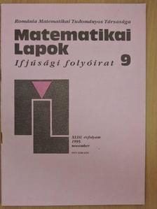 Bencze Mihály - Matematikai Lapok 1995. november [antikvár]