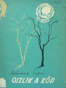 Andrássy Lajos - Oszlik a köd [antikvár]