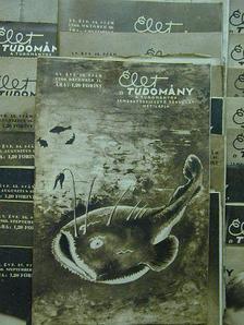 Dr. Székely Sándor - Élet és Tudomány 1960. (nem teljes évfolyam) [antikvár]