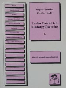 Angster Erzsébet - Turbo Pascal 6.0 feladatgyűjtemény I. [antikvár]