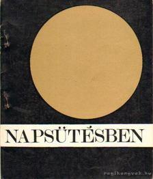 Erdős István - Napsütésben [antikvár]