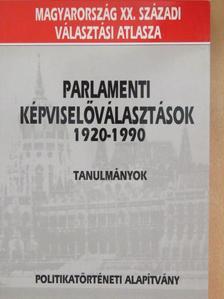 Varga Lajos - Parlamenti képviselőválasztások 1920-1990 [antikvár]