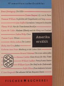 Ernest Hemingway - Amerika erzählt [antikvár]