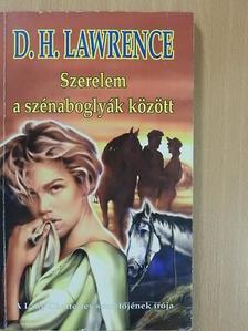 D. H. Lawrence - Szerelem a szénaboglyák között [antikvár]