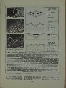A. I. - Természet Világa 1989. július [antikvár]