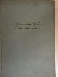 Mikszáth Kálmán - A Noszty-fiú esete Tóth Marival  [antikvár]