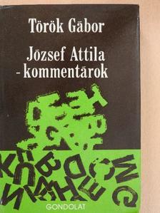Török Gábor - József Attila-kommentárok [antikvár]