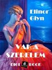 Glyn, Elinor - Vak a szerelem [eKönyv: epub, mobi]