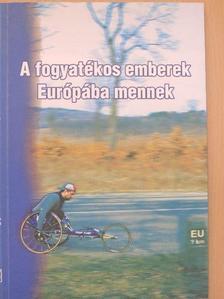 Dr. Borbély Szilvia - A fogyatékos emberek Európába mennek [antikvár]