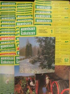 Pethő Ferenc - Kertészet és Szőlészet 1978. január-december [antikvár]