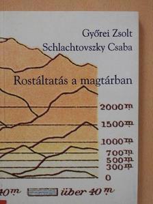 Győrei Zsolt - Rostáltatás a magtárban [antikvár]