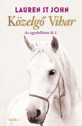Lauren St John - Közelgő vihar - Az egydolláros ló 1. [eKönyv: epub, mobi]
