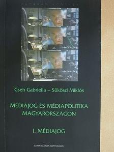 Cseh Gabriella - Médiajog és médiapolitika Magyarországon [antikvár]