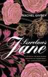 Rachel Givney - Szerelmes Jane - Mi történne, ha Jane Austen felbukkanna napjainkban... és szerelembe esne?