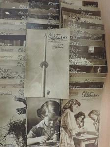 Dr. Székely Sándor - Élet és Tudomány 1962. január-december [antikvár]