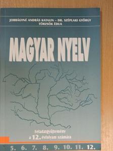 Dr. Széplaki György - Magyar nyelv 12. [antikvár]
