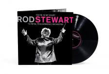 ROD STEWART - YOU'RE IN MY HEART 2LP ROD STEWART
