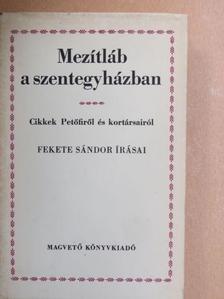 Fekete Sándor - Mezítláb a szentegyházban [antikvár]