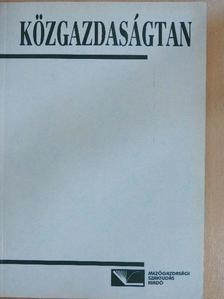 Bernáth Miklós - Közgazdaságtan [antikvár]