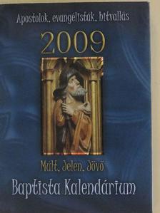 Bácsi Sándor - Múlt, Jelen, Jövő 2009 [antikvár]