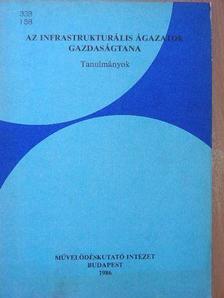 Bálint István - Az infrastrukturális ágazatok gazdaságtana [antikvár]