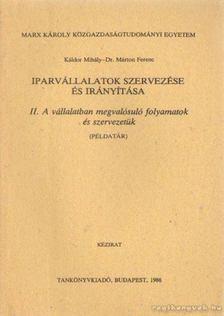 Káldor Mihály- Dr. Márton Ferenc - Iparvállalatok szervezése és irányítása II. A vállalatban megvalósuló folyamatok és szervezetük ( példatár) [antikvár]