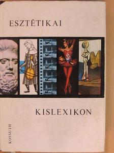 Fodor Géza - Esztétikai kislexikon [antikvár]