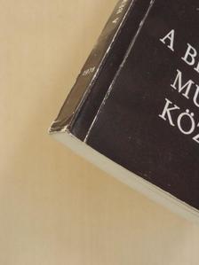 Beck Zoltán - A Békés megyei Múzeumok Közleményei 1978/5. [antikvár]