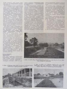 Dörgő Miklós - Szakipari technika 1969., 1973-1974., 1976., 1978-1980. (vegyes számok) (24 db) [antikvár]