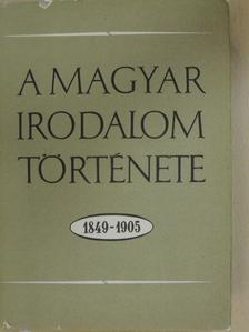 Diószegi András - A magyar irodalom története 1849-1905 [antikvár]