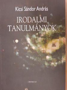 Kicsi Sándor András - Irodalmi tanulmányok [antikvár]