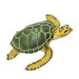 Safari Tengeri teknős (274329)