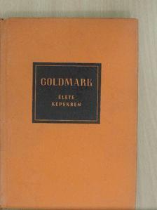 Várnai Péter - Goldmark Károly élete képekben [antikvár]