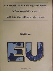 Rózsáné Dr. Lupkovics Marianna - Az Európai Uniós munkaügyi irányelvek és érvényesítésük a hazai kollektív tárgyalásos gyakorlatban [antikvár]
