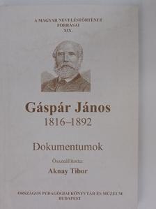 Ballagi Mór - Gáspár János 1816-1892 [antikvár]