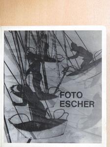 Mihályfi Ernő - Escher Károly munkássága [antikvár]