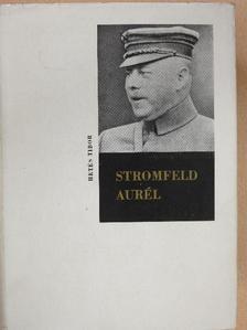 Hetés Tibor - Stromfeld Aurél (dedikált példány) [antikvár]