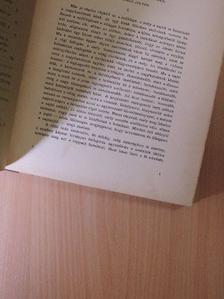 Ady Endre - Szerda 1906. (nem teljes évfolyam) [antikvár]