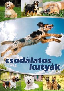Vida Péter szerk. - Csodálatos kutyák
