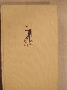 Krúdy Gyula - A madárijesztő szeretője [antikvár]