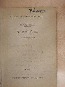 Dr. Kulcsár Kálmán - Szociológia [antikvár]