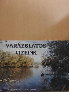 Ady Endre - Varázslatos vizeink [antikvár]