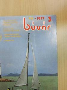 Bankovics Attila - Búvár 1977. május [antikvár]