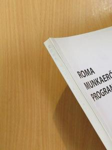 Barát Endre - Roma munkaerőpiaci programok [antikvár]