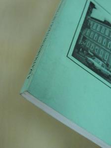 Boga Emese - A szatmárnémeti Kölcsey Ferenc Elméleti Líceum Évkönyve az 1995-1996 tanévről [antikvár]