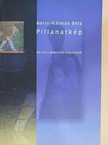 Borsi-Kálmán Béla - Pillanatkép [antikvár]